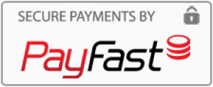 south africa's most secure payment processor